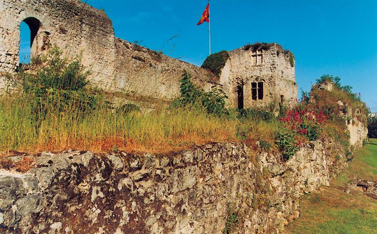 Fécamp : restes du palais ducal (© Eric Bruneval).