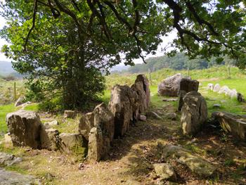 Les vestiges de l'allée couverte située au sommet du mont Castre, témoins d'une présence humaine dans le secteur remontant au Néolithique. (© Stéphane William Gondoin)