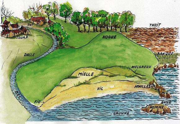 Dessin montrant les termes décrivant le paysage qui sont passés dans la toponymie ou ont été conservés, pour certains, dans les parlers locaux, en particulier dans le Cotentin, plus éloigné de Paris. Vic (vík en scandinave) est une anse, le homme (du vx.scand. holmr est un îlot, attesté en toponymie tardivement). En toponymie aussi : le sund est un détroit, le nez (nes) un cap, le bec (bekkr) un ruisseau, la dalle (dalr) une vallée, le tourp (thorp, un hameau), le tot (topt) un emplacement pour une ferme d'où une ferme, la banque un talus, le thuit (thveit) un essart, la hogue (haugr) une éminence, la londe (lundr) un petit bois. Ebbe (marée basse) et fio (marée haute), ainsi que mielle (dunes - melar) et melgreux (oyat - melgres) sont encore attestés dans les parlers du Cotentin, entre autres (© Georges Bernage).