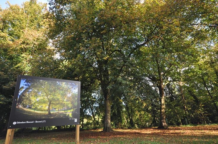 L'exposition en plein air « Petits et grands jardins de Normandie », à Thury-Harcourt  (Photo Antoine Pinable © Patrimoine Normand).