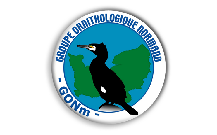 Logo « Groupe Ornithologique Normand »  (DR).