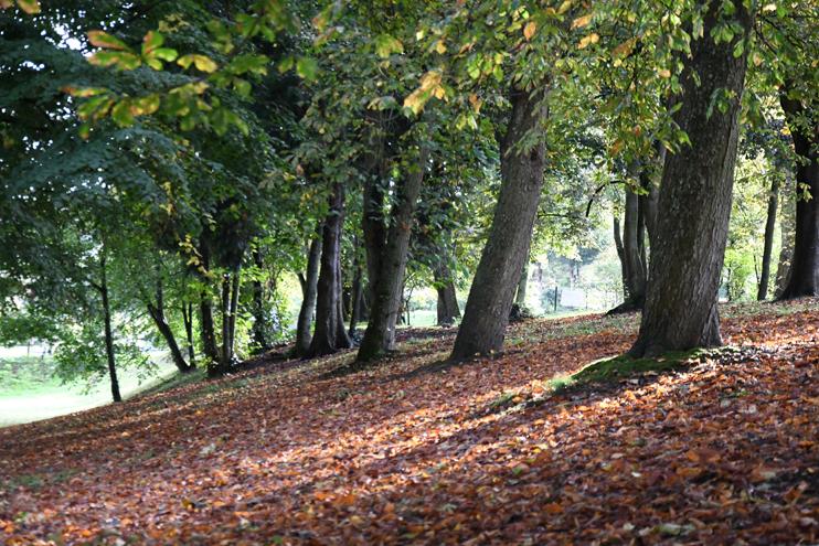 Parc du château d'Harcourt, à Thury-Harcourt (photo Rodolphe © Patrimoine Normand).