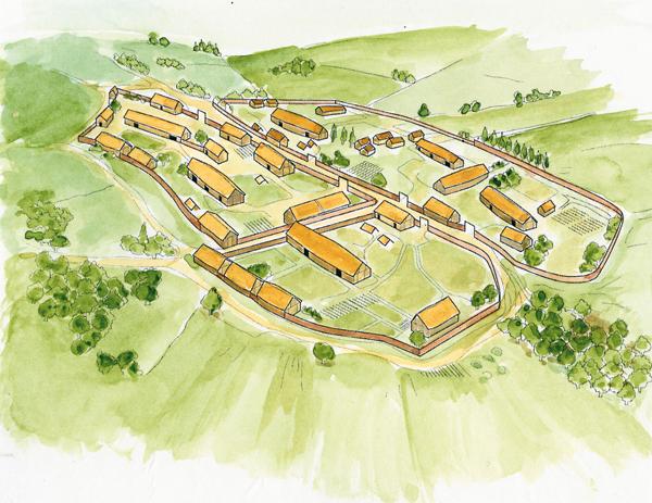 village viking